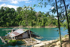 Casa só na selva - sok do khao Imagem de Stock Royalty Free