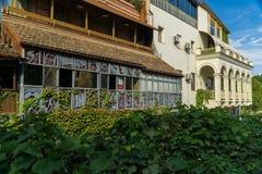 Casa saliente con el balcón, uvas salvajes demasiado grandes para su edad en la ciudad vieja Tbilisi, Georgia Foto de archivo libre de regalías