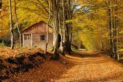 Casa sola in montagna di autunno Immagini Stock Libere da Diritti