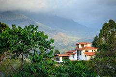 Casa sola in montagne verdi Immagini Stock