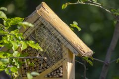 Casa speciale per gli insetti utili del giardino, costruita dei materiali naturali Crea i termini naturali per il mantenimento Immagini Stock