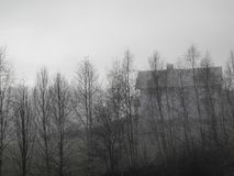 Casa spettrale con gli alberi e la nebbia immagine stock libera da diritti