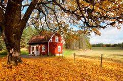 Casa sueca roja entre las hojas de otoño Foto de archivo libre de regalías