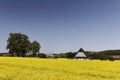 Casa suportada com campo da violação em Baixa Saxónia, Alemanha Imagens de Stock