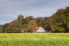 Casa suportada em Iburg mau, país das CK do ¼ de OsnabrÃ, Baixa Saxónia, Alemanha Fotos de Stock