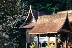 Casa tailandesa vieja con Plum Flowers At Foreground borrosa fotografía de archivo