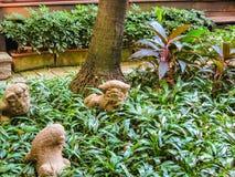 Casa tailandesa y jardín tropical Bangkok, Tailandia Imágenes de archivo libres de regalías