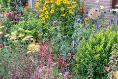 A casa tem o jardim da frente com diversas plantas de florescência Foto de Stock