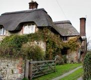 Casa Thatched da vila Imagem de Stock