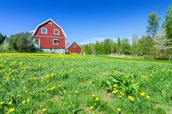 Casa tipica dello svedese nel paesaggio naturale Immagine Stock Libera da Diritti