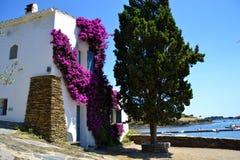 Casa tipica a paesaggio mediterraneo Fotografia Stock