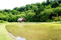 A casa tradicional de Japão Shirakawa-vai dentro Imagem de Stock Royalty Free