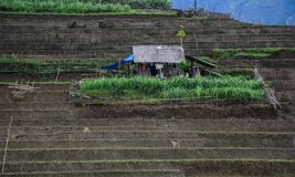 Casa tradicional de Vietname na aldeia da montanha imagens de stock