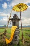 Casa tradicional del Balinese de bebidas espirituosas en campo del arroz Foto de archivo