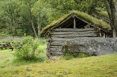 Casa tradicional escandinava con el tejado verde Fotos de archivo