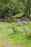 Casa tradicional escandinava con el tejado verde Imágenes de archivo libres de regalías