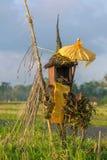 Casa tradizionale di balinese degli alcoolici sul giacimento del riso Immagini Stock Libere da Diritti