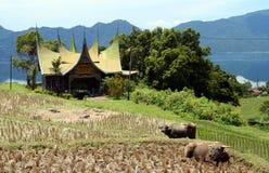 Casa tradizionale indonesiana Immagine Stock Libera da Diritti