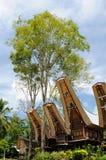 Casa tradizionale in Tana Toraja sull'isola indonesiana di Sulawesi Fotografia Stock Libera da Diritti
