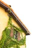 Casa tropicale dell'annata Fotografia Stock