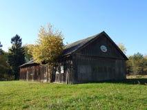 Casa velha, árvores e gato pintado, Lituânia imagens de stock royalty free