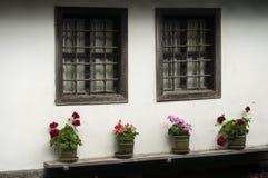Casa velha com os potenciômetros das flores Fotografia de Stock