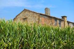 Casa velha da exploração agrícola em Rovigo Fotografia de Stock