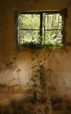 Casa velha do refrigerador da rocha. Imagens de Stock