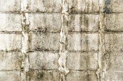 Casa velha do tijolo da parede de tijolo da parede de tijolo do fundo Imagens de Stock