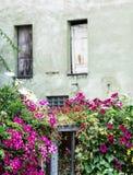 Casa velha e flores bonitas na cama, decoração natural Imagens de Stock Royalty Free