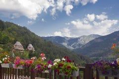 Casa velha grande na montanha da Sérvia fotografia de stock royalty free