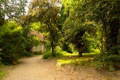 Casa velha nas madeiras Imagens de Stock Royalty Free