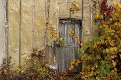 Casa velha Porta de madeira velha foto de stock royalty free