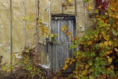 Casa velha Porta de madeira velha fotografia de stock royalty free