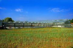 Casa verde. imagem de stock royalty free