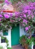 Casa verde de la puerta con las flores púrpuras Foto de archivo