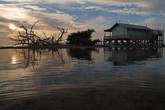 Casa verde de los pescados Imagenes de archivo