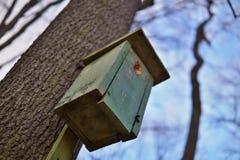 Casa verde dell'uccello della cabina dell'uccello che appende su un albero come simbolo di alimentazione degli animali e di prote Fotografie Stock