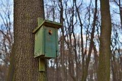 Casa verde dell'uccello della cabina dell'uccello che appende su un albero come simbolo di alimentazione degli animali e di prote Immagini Stock