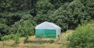 Casa verde em um jardim Fotografia de Stock Royalty Free