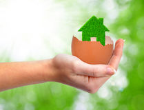 Casa verde en cáscara de huevo Imágenes de archivo libres de regalías