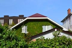 Casa verde grande acima do céu azul fotos de stock royalty free