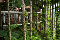Casa verde tropical Imagens de Stock