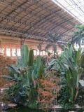 Casa verde tropical, lugar no St do século XIX da estrada de ferro de Atocha fotografia de stock