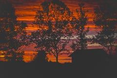 Casa vermelha bonita do por do sol e a silhueta das árvores Imagem de Stock