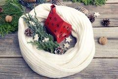 Casa vermelha, envolvida em um lenço em um fundo das hortaliças e dos cones Imagem de Stock