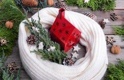 Casa vermelha, envolvida em um lenço em um fundo das hortaliças e dos cones Imagem de Stock Royalty Free