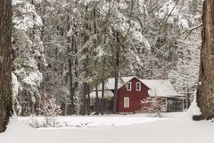Casa vermelha na neve cercada por árvores imagens de stock royalty free