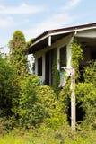 Casa vieja con el manojo de hiedra Foto de archivo