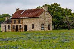 Casa vieja de Abandonded en Texas Wildflowers Imagen de archivo libre de regalías